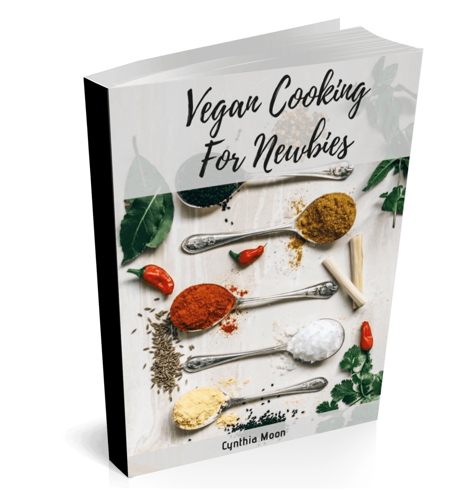 vegan cooking for newbies cover 2