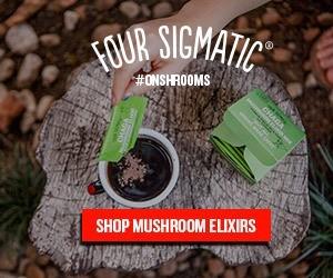 Mushroom Elixirs